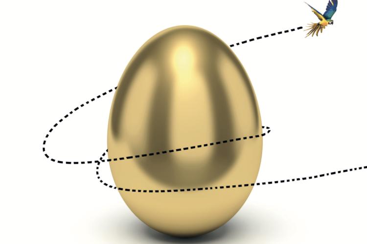 Eenmalig op 9 december a.s. de workshop 'Vind je Gouden Ei'!
